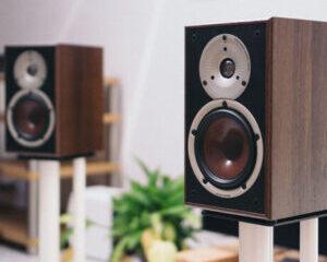 Dali-Spektor-2-högtalare-huvudbild-300x300