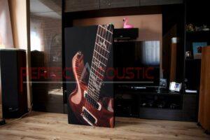 Hifi-utställningsrums akustikdesign med akustiska absorbatorer (3)