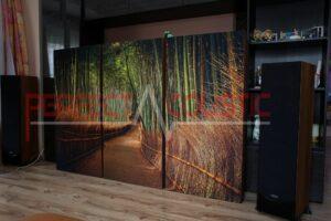 Hifi-utställningsrums akustikdesign med akustiska absorbatorer (4)
