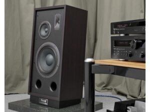 transpuls1000 tycoon-högtalare